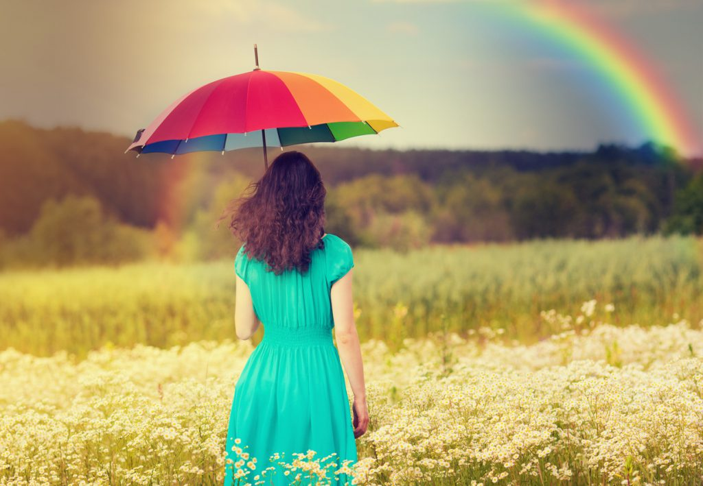 Rainbow Accessory
