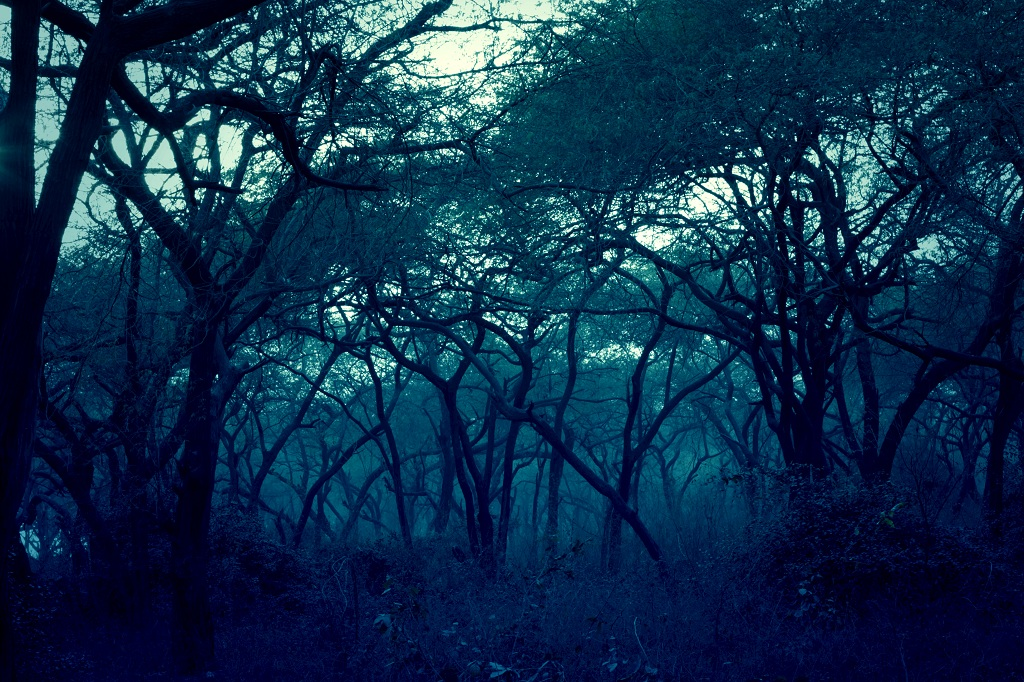 7 Haunted Places In India That'll Give You Sleepless Nights