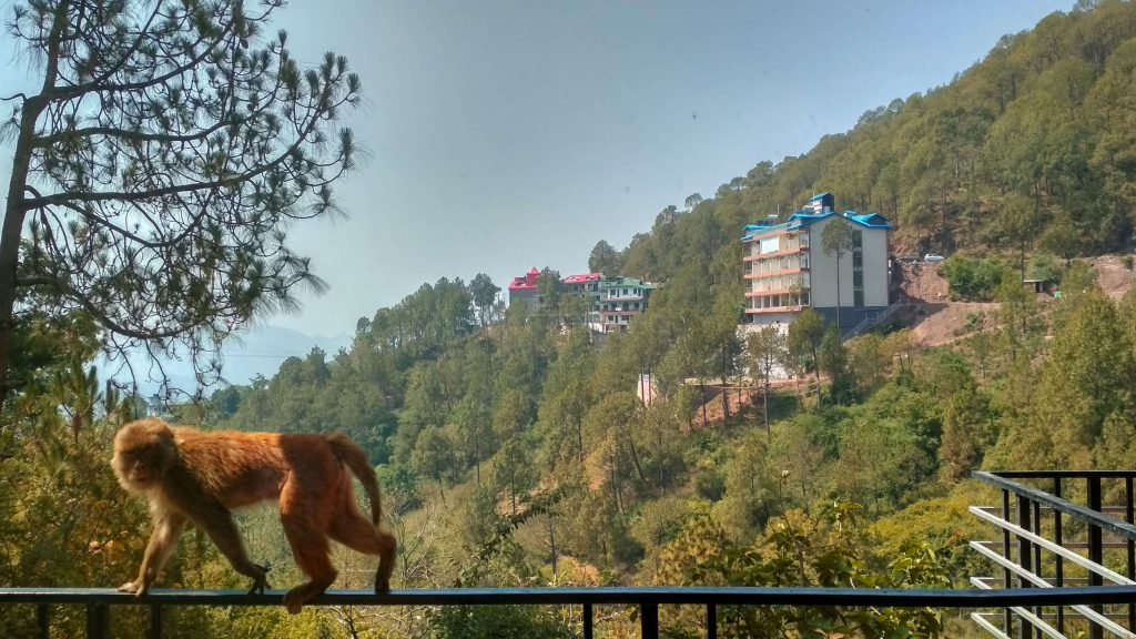 best hill stations in himachal