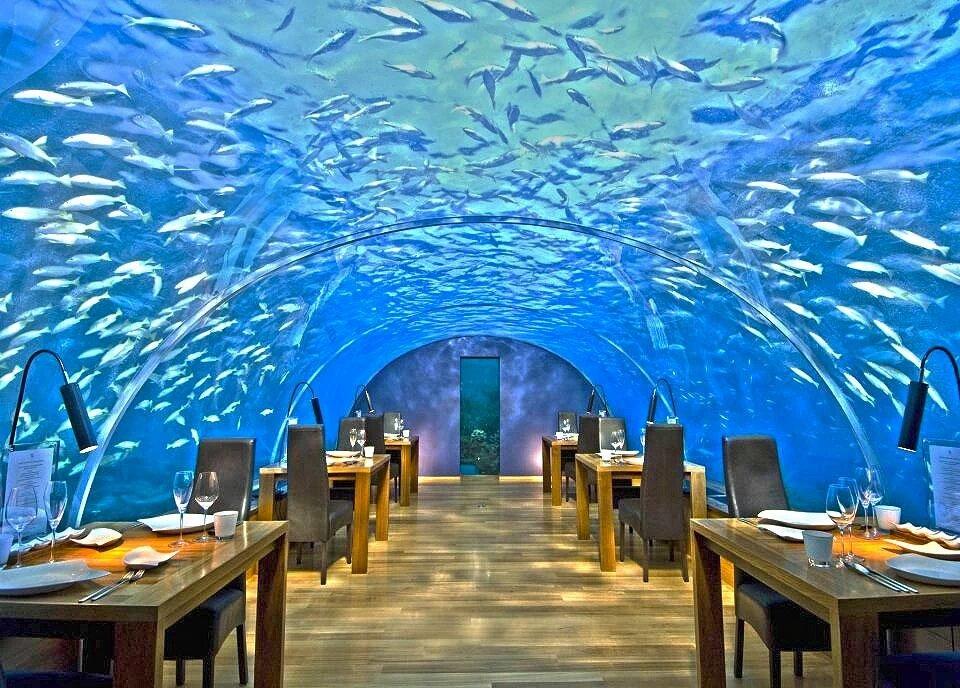 Ithaa Undersea Restaurant, Conrad Rangali Island, Maldives